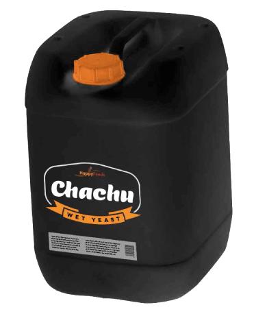Wet Chachu - Wet Yeast